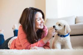 ペットにとって新しい環境はストレス!愛犬と新居に引っ越したらしてあげたい7個のこと